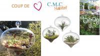 COUP DE COEUR DE C.M.C HABITAT votre bureau d'études architecturales à Cagnes-Sur-Mer : Les terrariums suspendus!