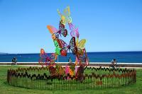 C.M.C HABITAT votre bureau d'études et de conception en travaux de rénovation zoome sur la promenade des arts de Cagnes sur Mer : L'envolée de Papillons
